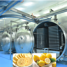 High quality vacuum freeze drying equipment prices 125m2 for fruit