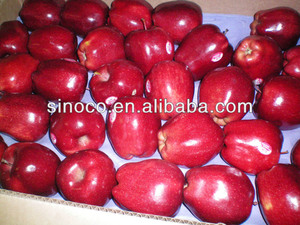 apple red delicious apple fruits, apple fruits red delicious