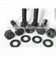 stainless steel 304 316 hex bolt screw and nut black oxide