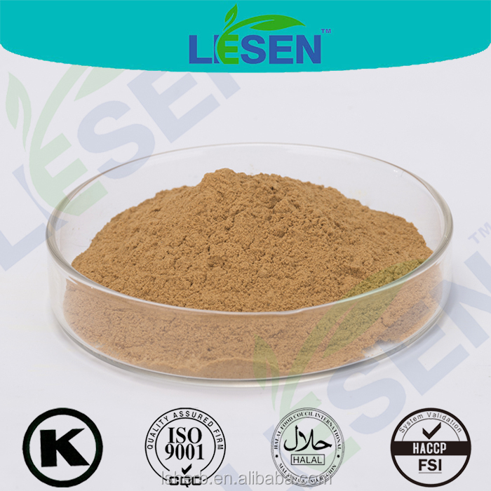 ISO & HACCP Supplier Borage Botanical Extract Powder 10:1