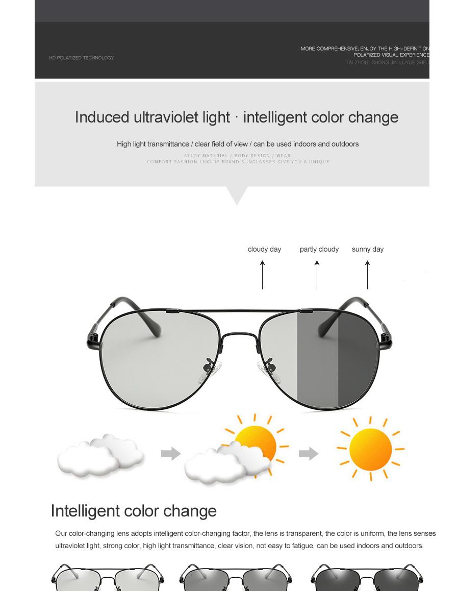 2018 New Polarized UV400 3 Colors Alloy Sunglasses Pilot Frog Mirror ... 357ea18ef4