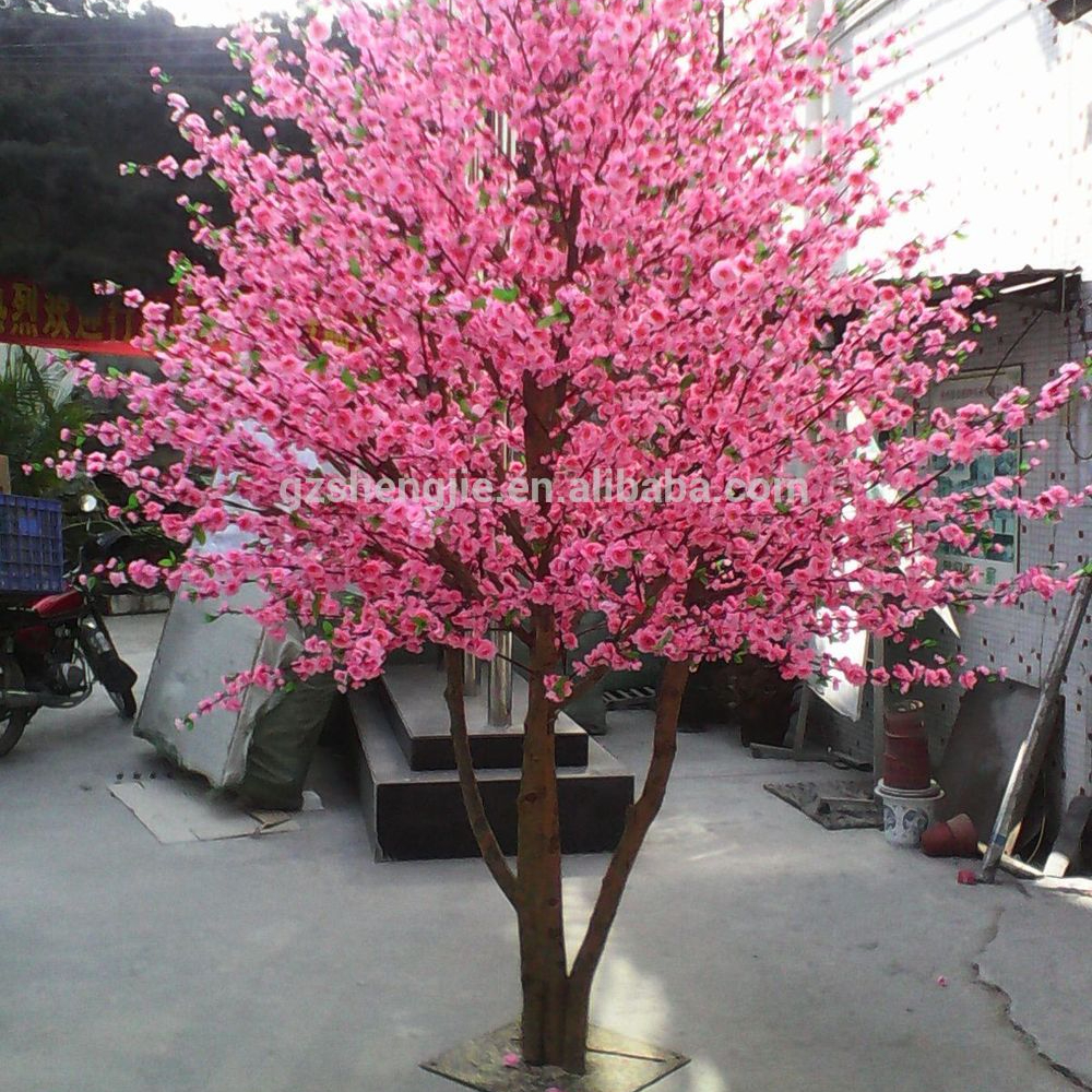 Small Cherry Flowering Tree With Pink Flowers For Wedding
