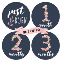 Factory Directly Supply Floral Baby Monthly Milestone Stickers (Set of 20) - Birth to 12 Months + 7 Bonus