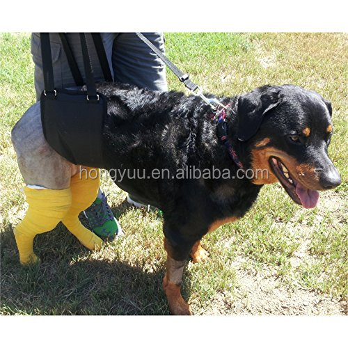 OEM wholesale Dog Limping Lift Harness Help up Sling Canine Arthritis ACL Rehabilitation Poor Stability ,Mobility aid & Recovery