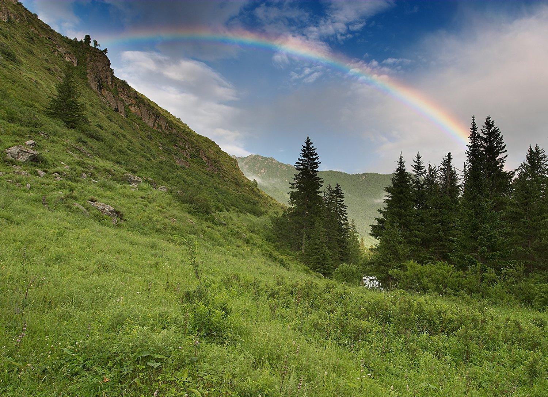 Buy kuan yin art greeting card rainbow aura quan yin art greeting st patricks day greeting cards over the rainbow otr100 business greeting card kristyandbryce Images