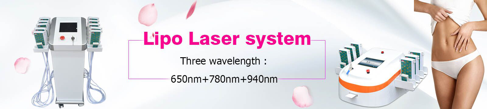 Professional CE Approved lipo laser slimming machine with 209mw lamp