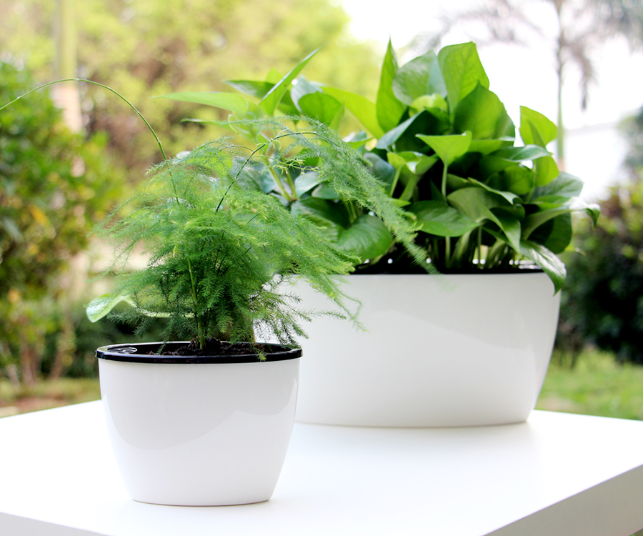 Alibaba & Factory Supplier Free Sample Self Watering Oval Shape Big Size Outdoor Planters Flower Pots Garden - Buy Outdoor PlantersBig Size Outdoor ...