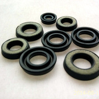 gas spring seal rubber seal high quality oil seal for gas spring