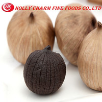 the Chinese Antioxidant health food, Fermented Solo Black Garlic