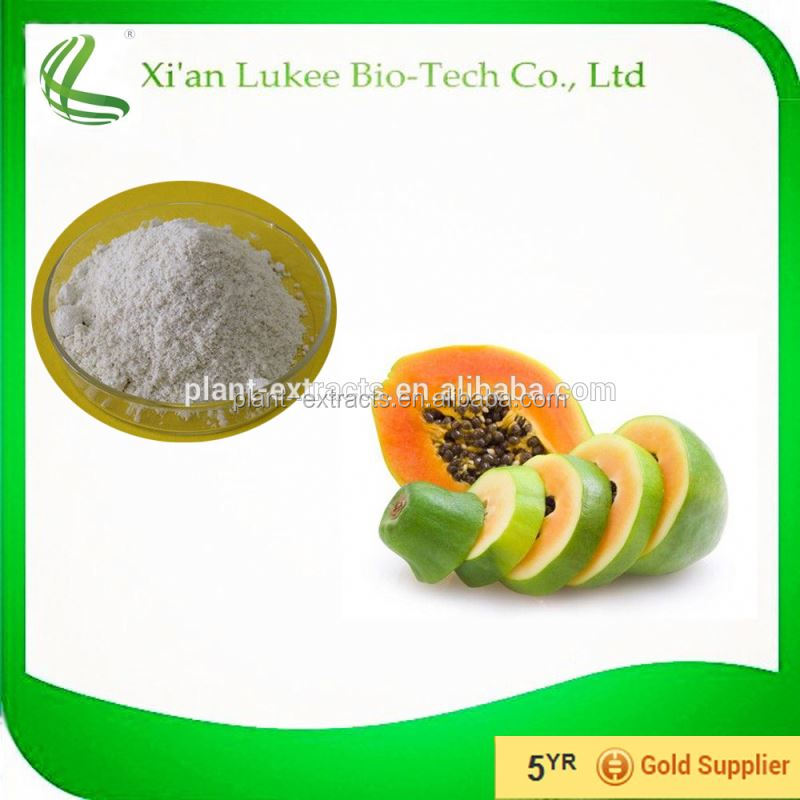 natural papain powder dry papaya powder/papaya extract/dried papaya leaf