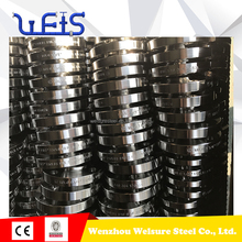 stainless steel raised face long weld neck flange