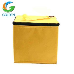 Insulated Cooler Lunch Food Delivery Disposable Cooler Bag, Canvas Fabric Tote Ice bag