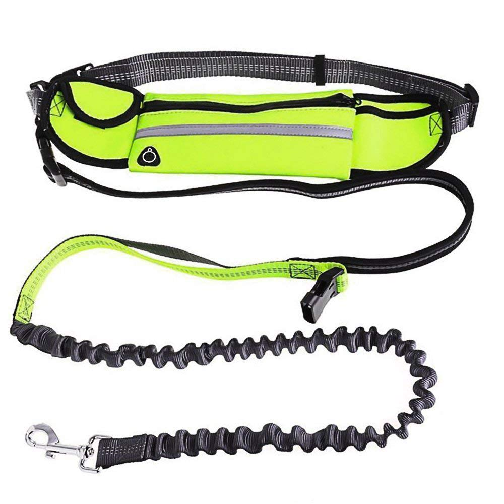 Hands Free Bungee Dog Leash with Pouch, Solofish Reflective Extendable Retractable Pet Leash with Adjustable Waist Pocket Bag for Dog Safety Walking Jogging Running Training