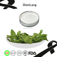 China Stevia With High Quality Stevia Mints Pure Nature Stevia Wholesale Prices