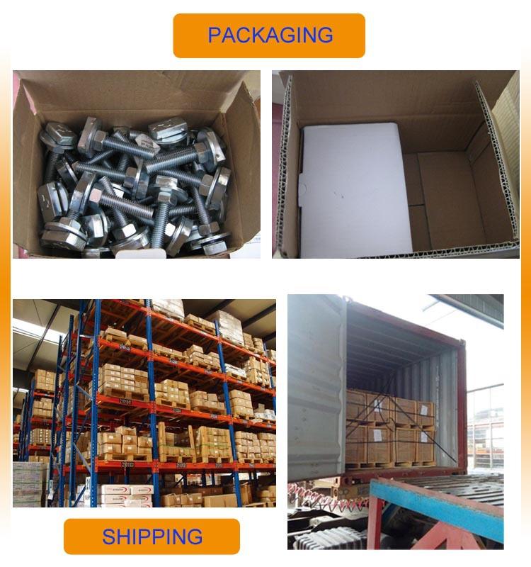 China Supplier Carbon Steel Machine Screw Anchor Bolt Hex Bolt ...