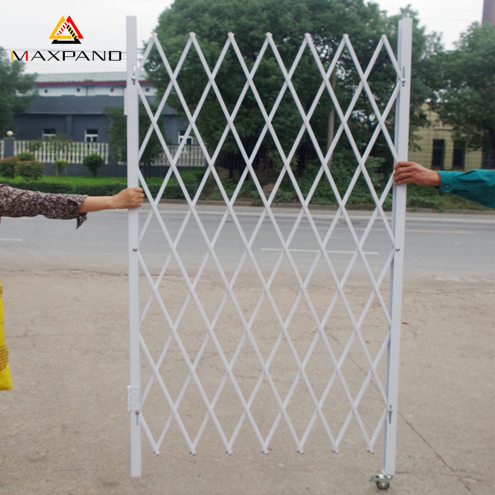 MAXPAND Hot Sale Steel Construction Main Gate Design Home