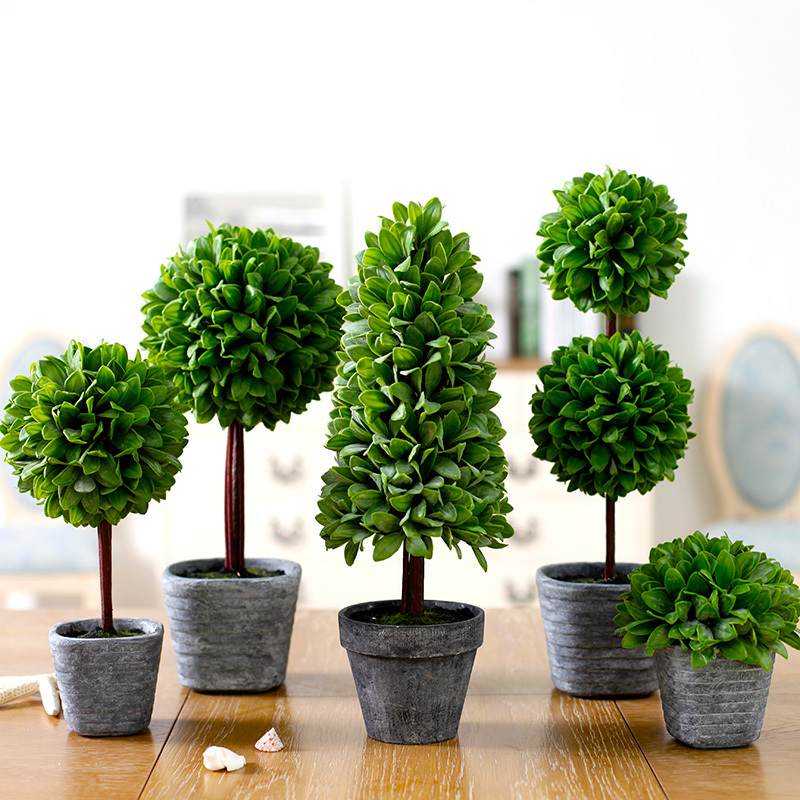 Best Indoor Plants For Small Pots: Exterior And Interior Magazine: Decorate Interiors With Bonsai