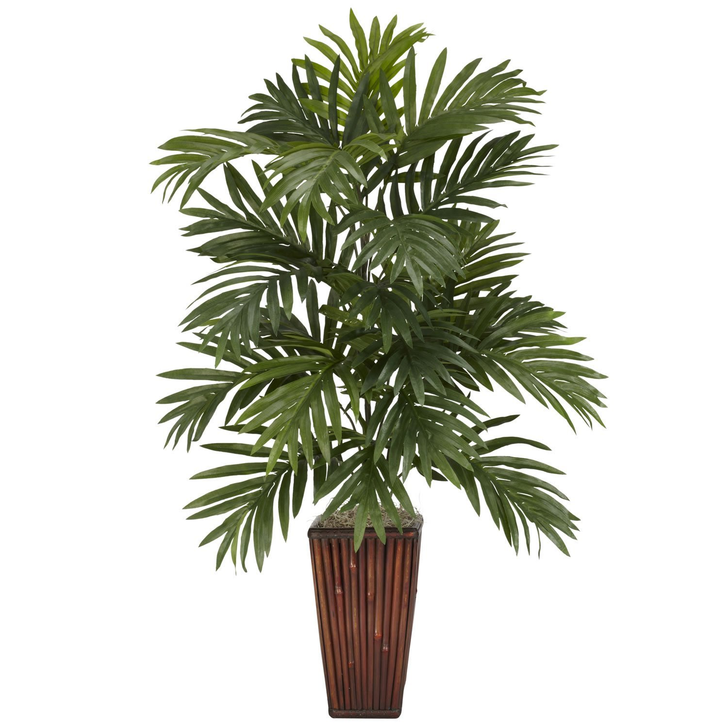 Cheap vase for bamboo plant find vase for bamboo plant deals on get quotations new areca palm wbamboo vase silk plant reviewsmspy