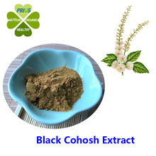 Black Cohosh Extract cimicifuga racemosa powder with best price black cohosh for menopause