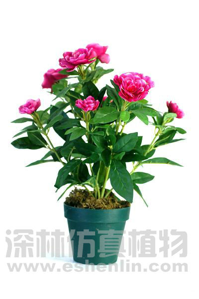 Wholesale Silk Plant And Flowers,Red Azaleas Bonsai