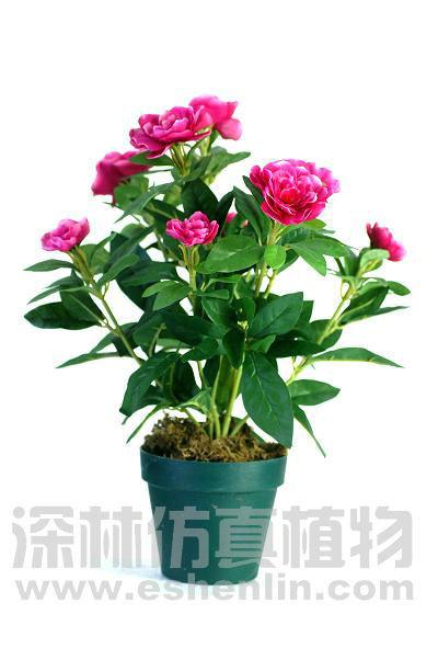 Buy cheap china silk plants and flowers products find china silk wholesale silk plant and flowersred azaleas bonsai mightylinksfo