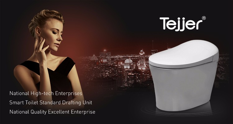 Fine Computerized Smart Automatic Warm Water Wash Toilet Bidet Pdpeps Interior Chair Design Pdpepsorg