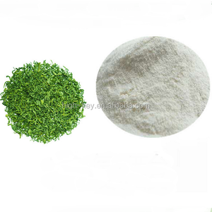 EX1040 Green tea powder Theanine 98% L-theanine