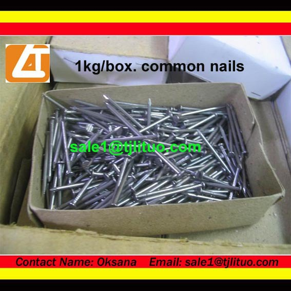 Common iron nails 14 galvanized spike nails