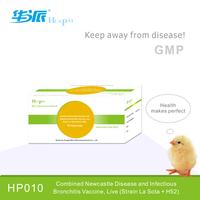 Rabbit Haemorrhagic Disease And Pasteurella Multocida Vaccine ...