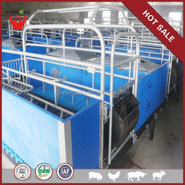 China manufacturer Well sell pig crate galvanized cages for guinea pigs