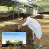 Pangoo Brand fertilizer bacteria for sheep manure composting