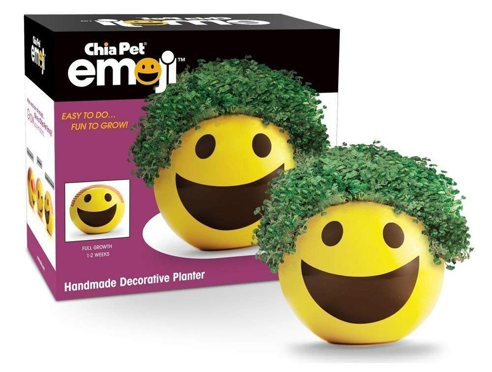 Cheap Chia Pet Find Chia Pet Deals On Line At Alibabacom