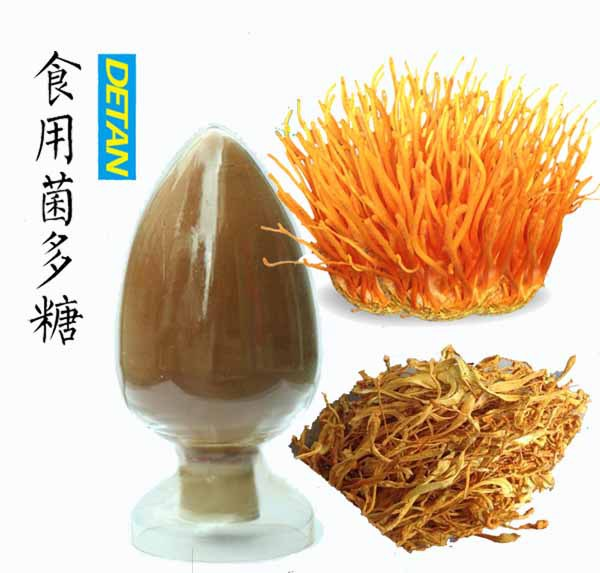 Cordyceps Sinensis Extract Mushroom Polysaccharides