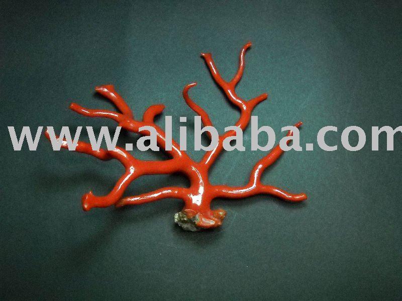 산호 붉은 색 지점 광택-가정 장식 기타 -상품 ID:103898205-korean ...
