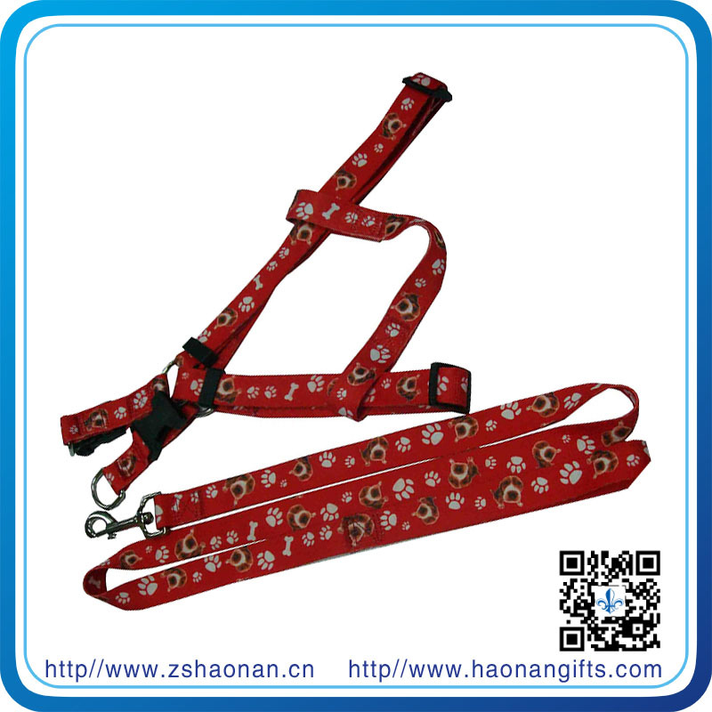 Pet Collars & Leashes Type leather dog collars and leashes for alibaba cistomer from haonan company in beautiful zhongshan city
