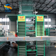 Poultry design layer chicken cages for kenya/pakistan poultry farm