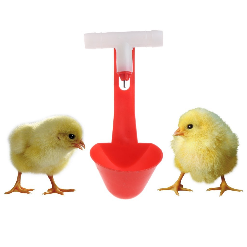 Stebcece 3 Pcs Drinker Cups for Backyard Flock Poultry Watering System