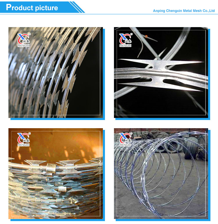 Professional Manufacturer Razor Wire Fencing Price (Competitive Price)