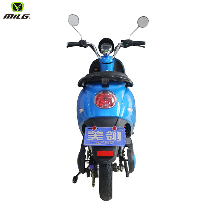 electric fat bike 2019