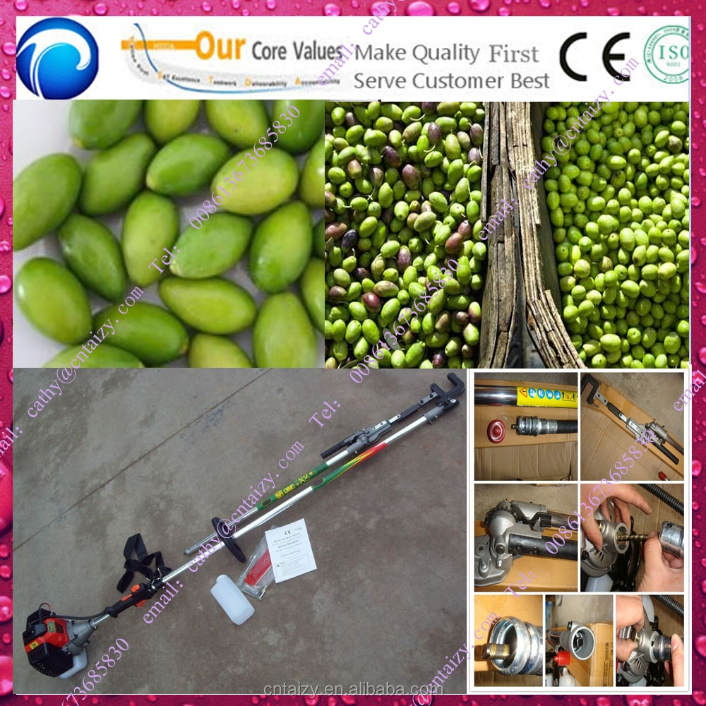 low price wholesale price olive shaker
