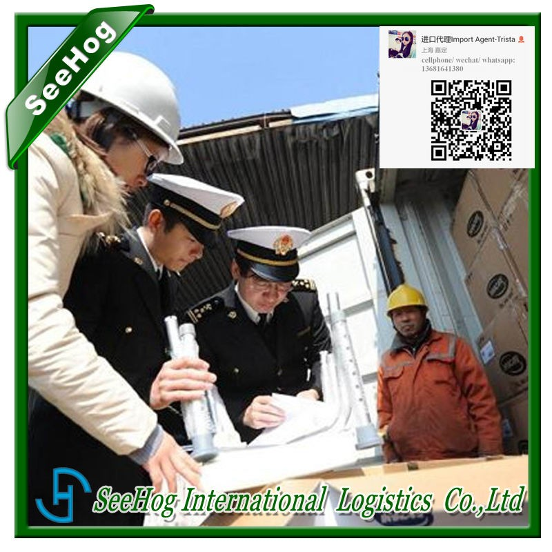 international sea freight bank server import beijing sea shipment clearance