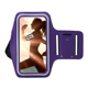 Cell Arm Phone Holder Running Sports Lycra Fabric Armband For Iphone 6 blackberry