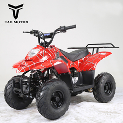 Tao Motor Mini ATV Quad Bike 110cc ATA110-B with CE ECE