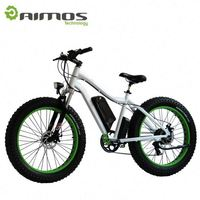 48v 1000w electric mountain bike / giant bike / electric bicycle for sale