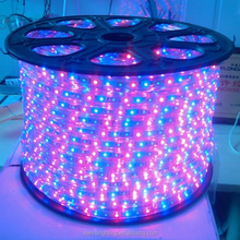 China supplier Hot Beautiful led holiday living rope lights