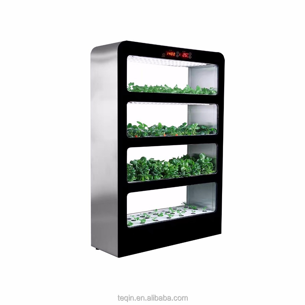 Hydroponics system intelligent led plant quick grow cabinet,grow box