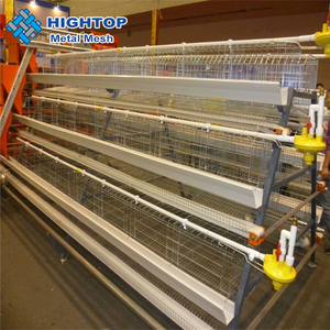 South Africa Chicken cage Automatic design Layer Chicken Cage for sale