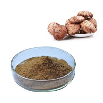 direct supply 50 percent Shitake Mushroom Extract Polysaccharide powder