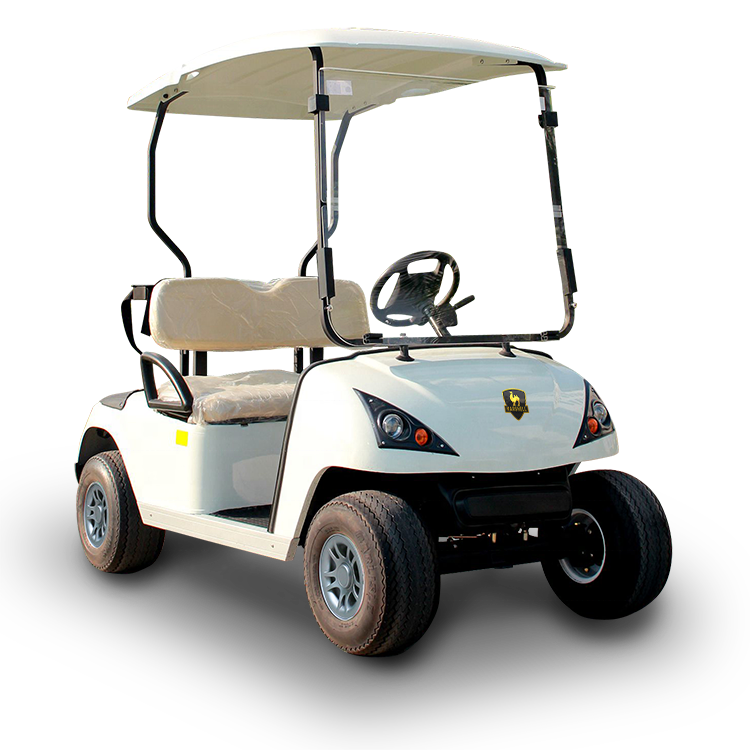 Ce Approved 4 Wheel Drive Electric Golf Cart With 2 Seats Dg C2