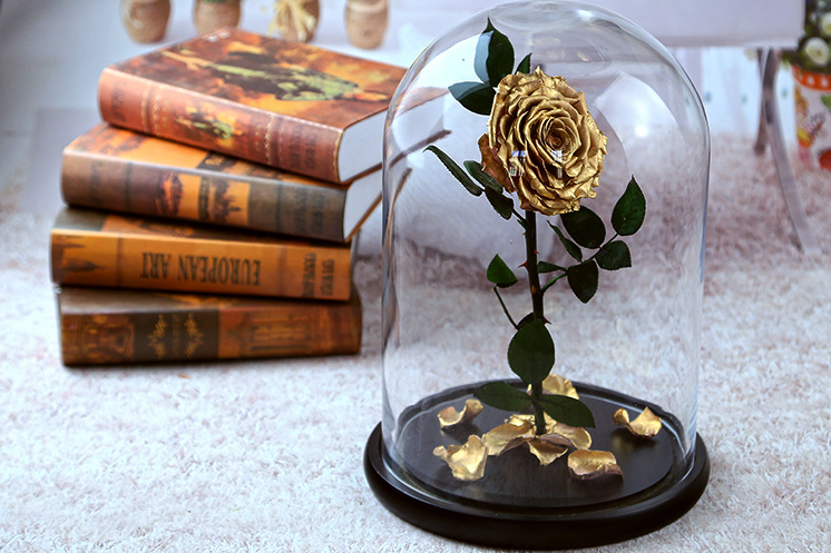 rose-in-glass-dome
